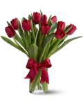 online tulips in manila city